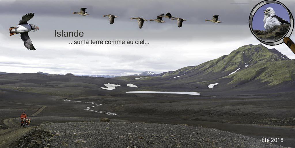 Islande - Pierre Michel